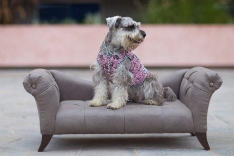 Cama para perro grande Sofa Sirena