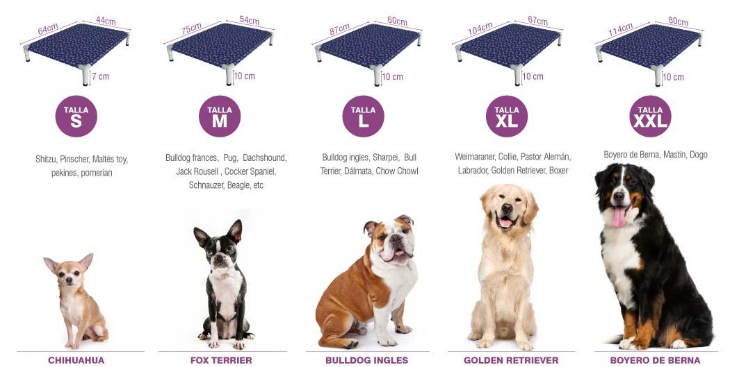 Guia de tallas de camas para perros en Lima Peru