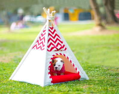 Nuku Camas para perros
