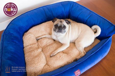Cama para perro Capella Azul Ideal para perros grandes