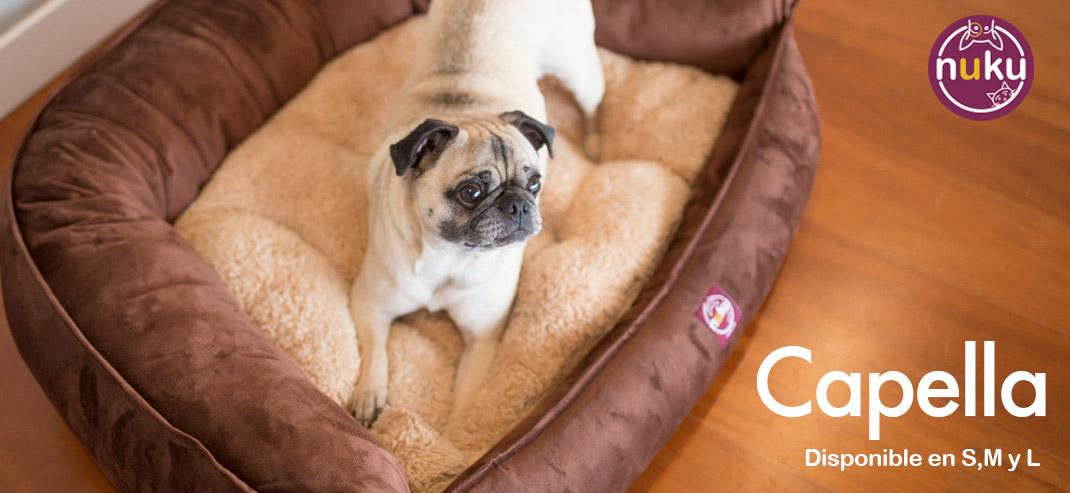Cama para perro peru modelo Capella
